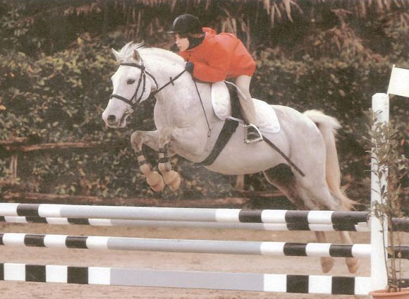 A young rider in her first competition with Total Contact